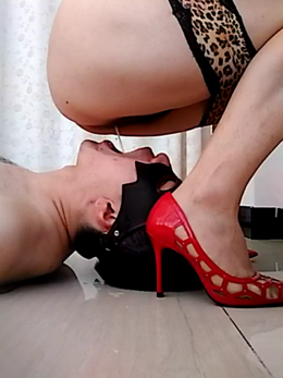 Domination play verbal humiliation feel submissive