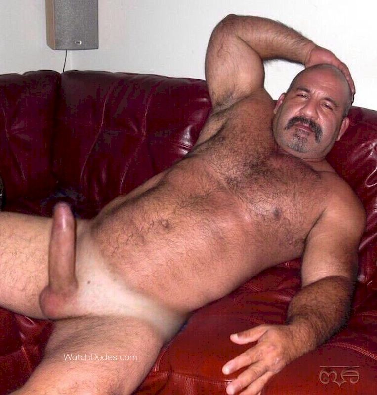 Bear man nude