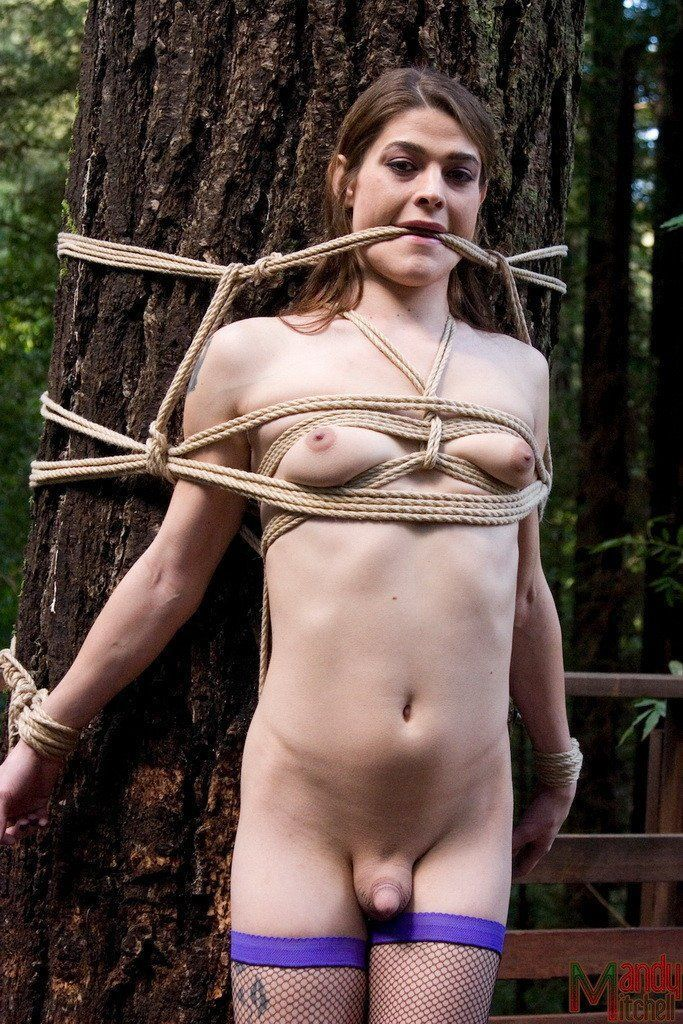 Sexy nude tree bondage fucking
