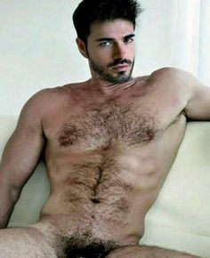 Men hairy nude pics of