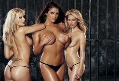 Lucy pinder nude wallpaper