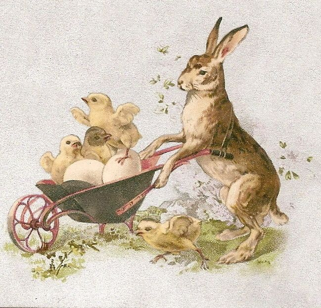 Clip free of vintage rabbits art