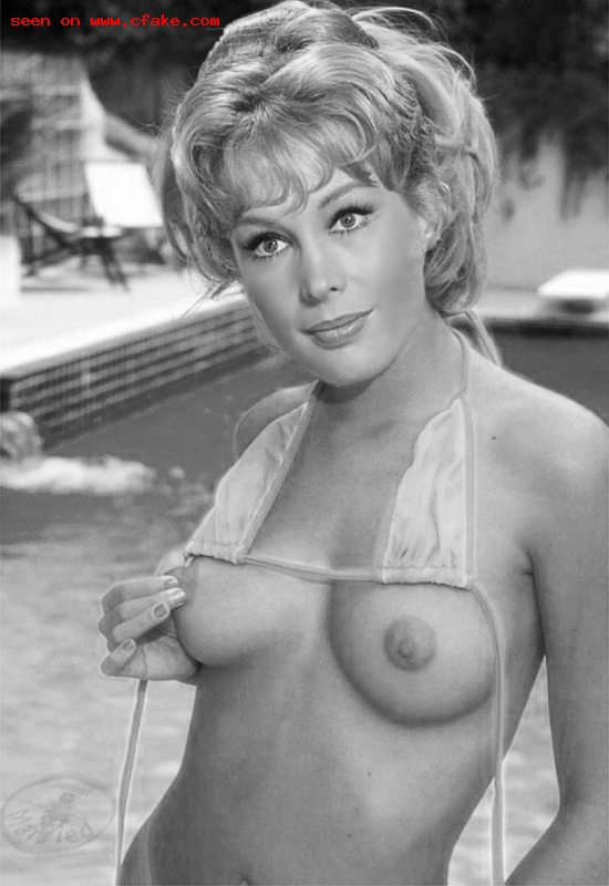Naked barbara feldon nude hot nude