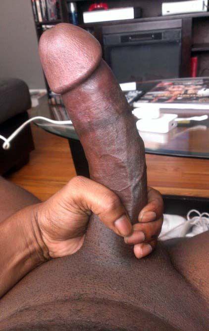 Big black cock on bed erect
