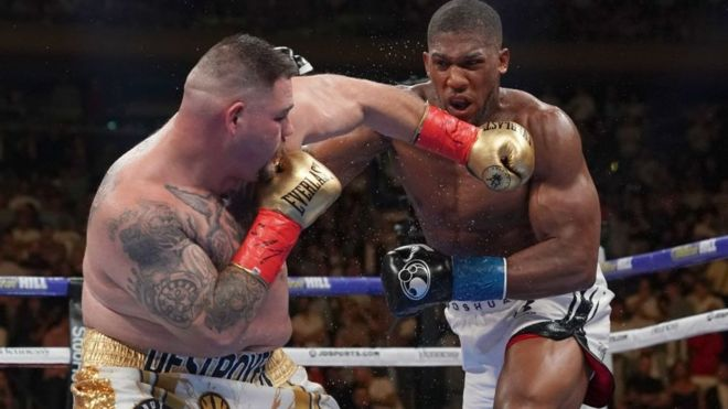 Out knocked knockout boxing bikini