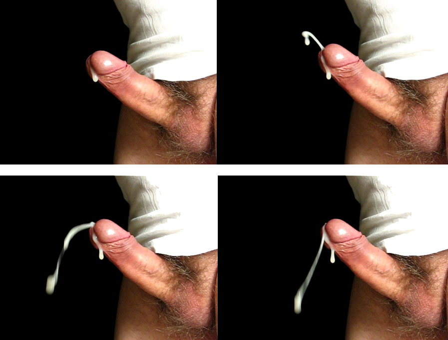 Pictures of a penis ejaculating