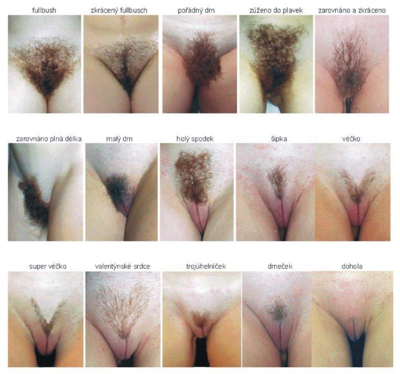 Young pussy pubic hair styles