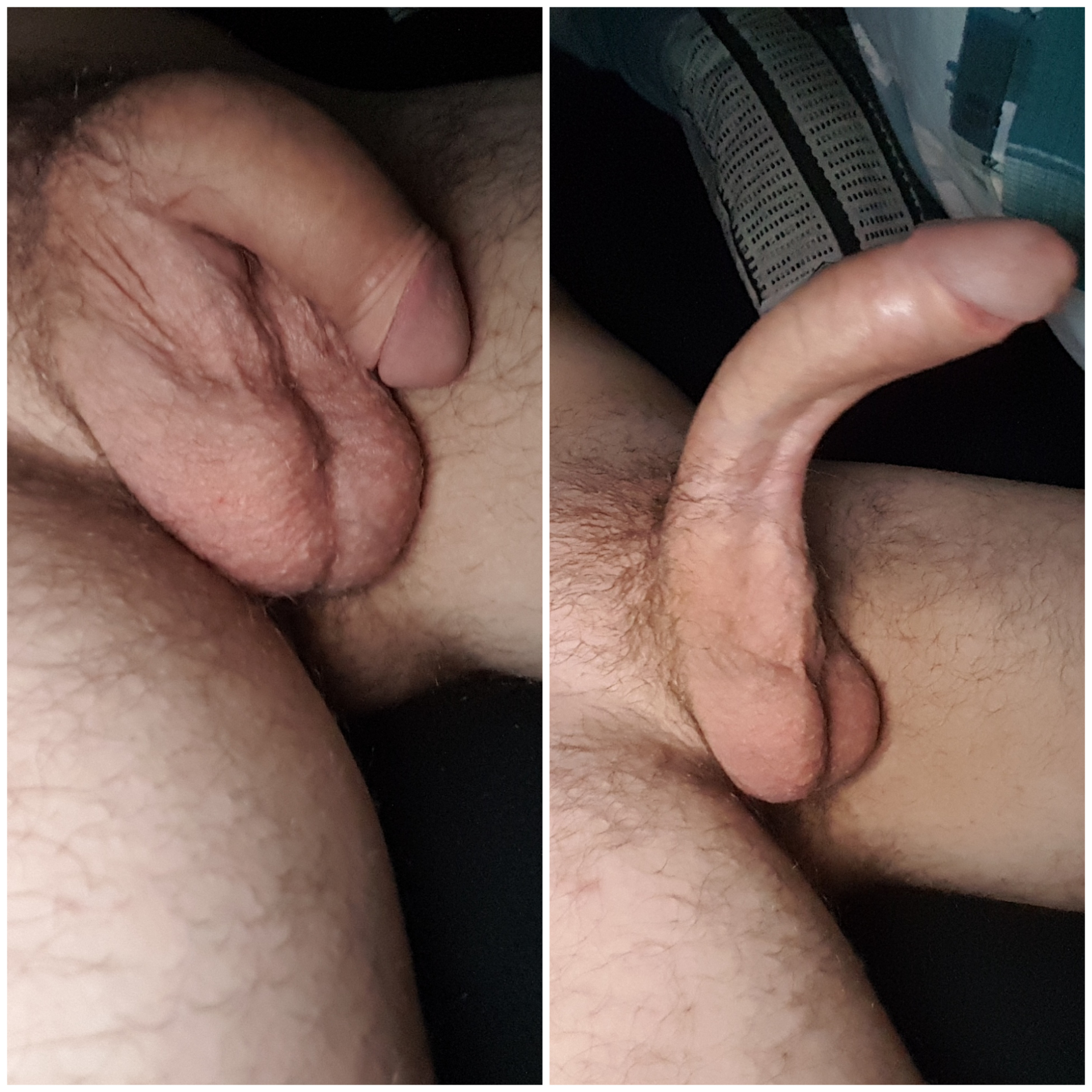 Flaccid and erect cock